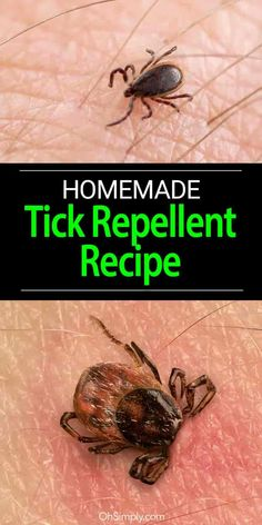 Ticks are some of the most troublesome outdoor pests. A simple homemade solution can help you repel ticks and save your hard-earned money. Homemade Tick Repellent, Natural Tick Repellent, Essential Oil Tick Repellant, Essential Oil Bug Spray, Essential Oils Dogs, Ticks On Humans, Ticks On Dogs, Tick Repellent For Humans, Insect Repellent