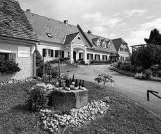 Weisser Burgunder, 2013, Herrenhof Lamprecht #Gottfried #Lamprechts Weine sind immer ein wenig etwas Besonderes. Wie auch dieser. http://www.dieweinpresse.at/weisser-burgunder-2013-herrenhof-lamprecht/