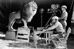 We've all seen the Metro-Goldwyn-Mayer lion that has roared at the beginning of many movies. Here's how it was shot! Shooting of the MGM Intro And here's the MGM logo over …