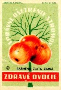 Bohemian-Graphics-Czech-Design-2-Tres-Bohemes