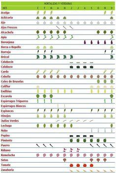 Consume frutas y verduras de temporada... y ecológicas claro