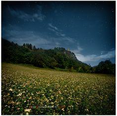 Un campo di grano saraceno riposa sotto la torre De li beli miri a Teglio, Valtellina