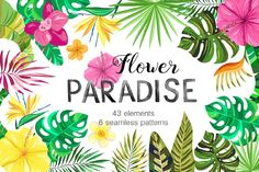 Vector Flower Paradise Set by LarysaZabrotskaya on @creativemarket. his collection perfect for card making, party invitations, wedding invitations, stationery, blog design, fabrics, digital scrapbooking, packaging, greeting cards, D.I.Y. and other projects. Limited Time Offer **Affiliate Link**