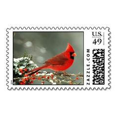 Cardinal Christmas Postage Stamps Artwork designed by CrossmanDesigns. Made by Zazzle Stamps in San Jose, CA.  #madeinusa