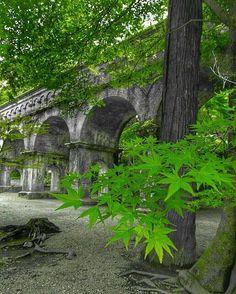 Nanzenji Kyoto Japan 南禅寺 #Kyoto #京都