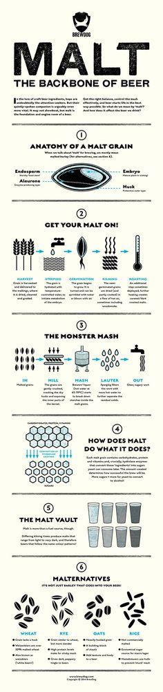 Infographic Malt the Backbone of Beer Beer 101, All Beer, Wine And Beer, Home Brewery, Home Brewing Beer, Beer Poster, Beer Tasting, Beer Recipes, How To Make Beer