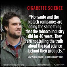 Dave Murphy, founder of Food Democracy Now! discusses the lack of independent peer reviewed safety studies that are done on GMOs and compares it to big tabacco's lack of human health testing. Watch more of this discussion on MSN Reports here: http://youtu.be/agoQeibnO4Y Post from Organic Consumers Association