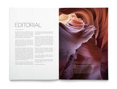La Tortillería | A Creative Company — Tierra Magazine