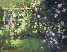 roses+side+yard.jpg 1,440×1,130 pixels