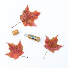 🍂♥️ Fall in love with Blister Balm® Lip Protectant this autumn season. . . . #Moisturizing #hydrating #fall #autumn #autumnleaves #leaf #lipbalm #lipprotectant #coldsoreprevention #coldsore #feverblister #coldsoreremedy #beauty #skincare #lipcare #jojoba #botanical #jojobaoil #softlips #blisterbalm Dry Lips, Soft Lips, Jojoba Oil Uses, Cracked Lips, Cold Sore, Lip Care, Active Ingredient, Autumn, Fall