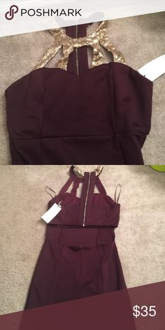 Tobi Dress Maroon with gold sequence, short, open back, body con zip up dress Tobi Dresses Mini
