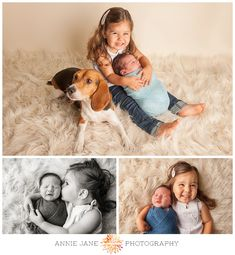 second baby newborn session with family and dog