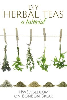 DIY Herbal Teas: A Tutorial - ok, garden aficionados, get ready to grow and dry your own teas.