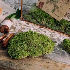 Preserved Short moss pole moss Natural Green 20x50cm for DIY image 1 Moss Garden, Garden Planters, Moss Centerpieces, Card Box Wedding, Wedding Ideas, Gift Card Boxes, Moss Terrarium, Moss Wall, Cute Frames