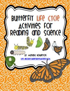 Butterfly and Chicken Life Cycles Activities and More! by Lil' Country Kindergarten