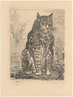 Cat, from Picasso: Original Etchings for the Texts of Buffon, 1936; printed 1942 (printer: Roger Lacouriere, French), sugar lift aquatini and drypoint, Spanish, Picasso