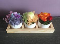 Mini rainbow set