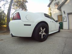 """Taken with a 'fish eye' lens, 10.5"""" rear wheel, blacked-out reflector and MRT black chrome tip visible...."""