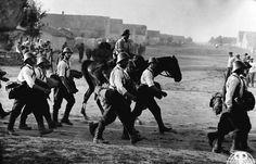 romanian soldiers Nistru Dniester river eastern front world war two ww2 romania