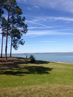 Sam Rayburn Lake Big Sam, Kayaking, Red Roses, Hiking, Trees, Camping, Spaces, Celestial, Sunset