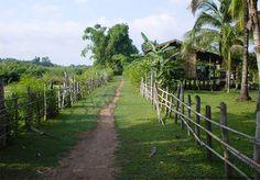 Ban Khao Pun Village in Bokeo - Laos