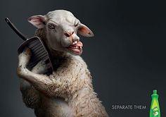 Diese Werbung der Agentur Lowe Bangkok hat schon einige Preise abgesahnt. Dabei geht es um eine besonders knifflige Situation im Haushalt. Ein hartnäckiges Schwein und ein trotziges Schaf denken gar nicht daran, sich von Teller und Pfanne zu lösen. Und uns
