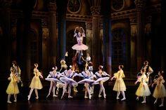 Compañía rusa traerá el ballet de La Bella Durmiente