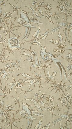 Scalamandre Aviary toile and wallpaper - taupe