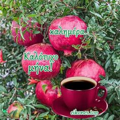Easter Quotes, Greek Quotes, Good Morning, Mina, Apple, Fruit, Herbs, Buen Dia, Apple Fruit