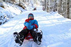 Die 12 schönsten Rodelstrecken im Schwarzwald Winter Jackets, Sled, Seasons Of The Year, Nice Asses, Winter Coats, Winter Vest Outfits
