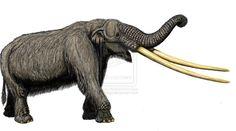 "Mammut ""grangeri"" by ~DiBgd"
