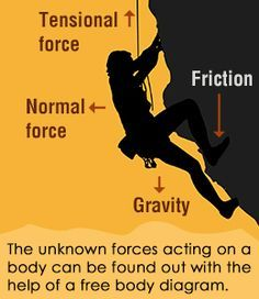 An Easy Guide to Understand Free Body Diagrams in Physics - Science Struck Force Physics, Physics Help, Physics Lessons, Physics Notes, Science Notes, Science Topics, Science Education, Science Activities, Science