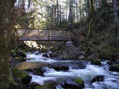 McDowell Creek Falls County Park - Portland, Oregon. Easy (3 miles)
