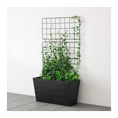 Image Detail For Large Modern Wall Trellis Wall