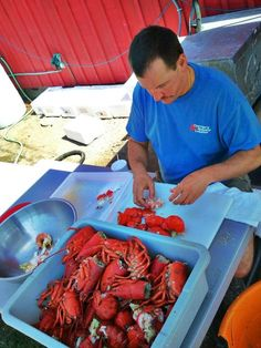 Carrier's Mainely Lobster in Bucksport, Maine