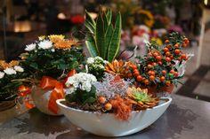 Aranjamentele florale în vas ceramic se regăsesc printre preferatele clienţilor datorită eleganţei lor. Vino împreună cu #CartonasulFloareDeColt în magazinele noastre să alegi preferatul tău!  #floaredecolt #flowershop #floralarrangement