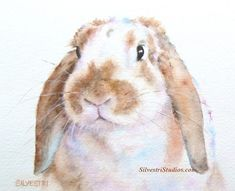Butterscotch, a lop eared bunny, is available as a watercolor print and greeting cards. Perfect for the bunny art nursery or anyone who loves bunnies for their decor!   She is a rescue rabbit from the wonderful East Bay Rabbit Rescue in California. To view more animal artwork by Teresa Silvestri, visit www.SilvestriStudios.com .