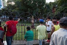 Árvores - Fiac Bahia 2012. Foto: Tiago Lima