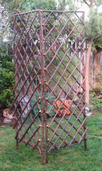 Fallen branches last ice storm--twig trellis. Like angular formality of this piece usually see are more organic form/ rustic styles Garden Arbor, Garden Trellis, Garden Gates, Garden Crafts, Garden Projects, Clematis Trellis, Willow Furniture, Jardin Decor, Cheap Pergola