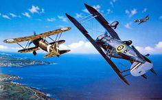 Gladiator over Malta, by Stan Stokes (Gloster Gladiator vs Fiat CR 42 Falco)