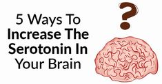 5 Ways to Increase the Serotonin in Your Brain : Healthy Holistic Living