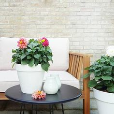 Bright flowers on the table, thanks for sharing Marielle! #loft #planter #outdoor #flowers #bright #colours #decoration