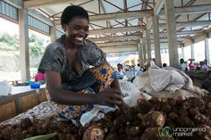 Cassava for Sale at