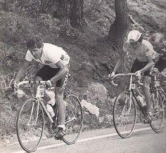 Este blog ha nacido para unir el ciclismo actual con aquel de antaño, para rememorar etapas y corredores míticos de la Historia del Ciclismo, permitiendo al mismo tiempo que nuestros lectores estén informados de la actualidad de este deporte. Blog, Tour De France, Enabling, Runners, Sports, Blogging