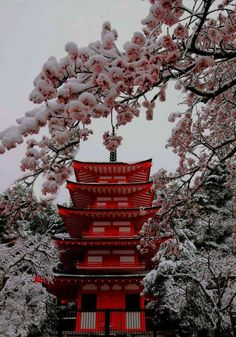 ideas nature photography beautiful places cherry blossoms for 2019 Aesthetic Japan, Japanese Aesthetic, Red Aesthetic, Travel Aesthetic, Aesthetic Pictures, Nature Aesthetic, Japanese Culture, Japanese Art, Japanese Quotes