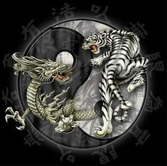 Dragon Tiger Tattoo, Tiger Dragon, Ying Y Yang, Phoenix, White Dragon, 5d Diamond Painting, Creative Activities, Your Paintings, Kung Fu