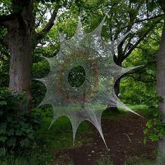 spider web- - - don't get caught...!!                                                                                                                                                     More