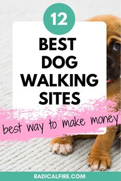 Do you want to make extra money while spending time with dogs? Here are the best apps and websites to find dog walking jobs to earn extra cash! #extracash #makemoney Dog Walking Jobs, Dog Walking Services, Dog Walking Business, Make Money From Home, Way To Make Money, Make Money Online, Earn Extra Cash, Extra Money, Dividend Investing