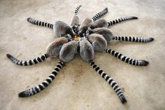 Synchronized meal - I had to put my glasses on, thought this was a spider at first with one extra leg. LOL my bad.....