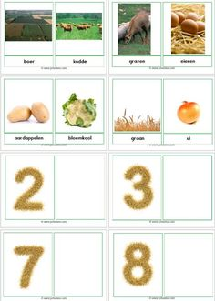 boerderijwoordkaarten01